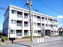 千葉県松戸市中矢切の賃貸マンションの外観