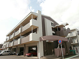 ドミールTS[3階]の外観