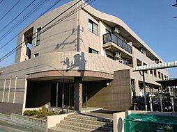 神奈川県高座郡寒川町岡田5丁目の賃貸マンションの外観