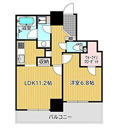 ライオンズ四谷タワーゲート 24階1LDKの間取り