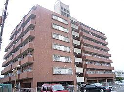 徳島県徳島市西新浜町1丁目の賃貸マンションの外観