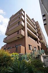 埼玉県和光市丸山台3丁目の賃貸マンションの外観