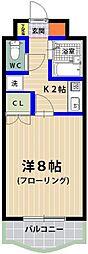 シャトレ21箱崎[305号室]の間取り
