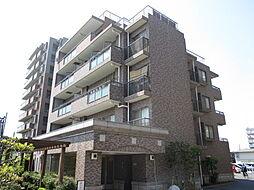 千葉県市川市大洲3丁目の賃貸マンションの外観