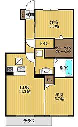 コットンハウスIII[1階]の間取り