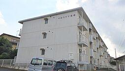 神奈川県伊勢原市池端の賃貸マンションの外観