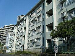 藤沢円行4号棟[432号室]の外観