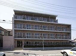 ドミール上福岡[213号室]の外観
