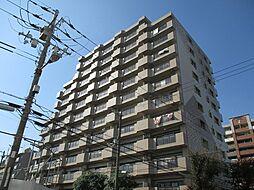 北淀宝ハイツカトレア[6階]の外観