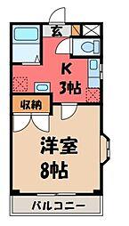 栃木県宇都宮市陽東8丁目の賃貸マンションの間取り