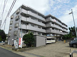神奈川県海老名市杉久保北5丁目の賃貸マンションの外観