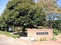 早稲田公園 9...