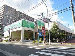 [テラスハウス] 神奈川県横浜市港北区樽町4丁目 の賃貸【/】の外観