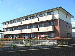 ハイカムールST・OKA[1階]の外観