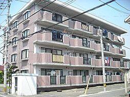 福岡県春日市白水ヶ丘5丁目の賃貸マンションの外観