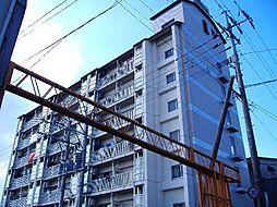 弓ヶ浜ビル[503号室]の外観
