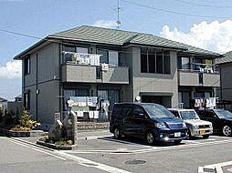 メゾン志津川[A202 号室号室]の外観