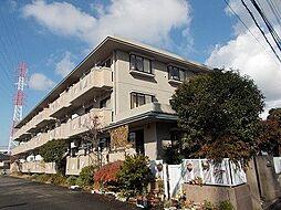 ガーデンハイツ小沢[3階]の外観