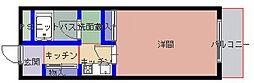 藤ノ木ハイツIII[203号室]の外観