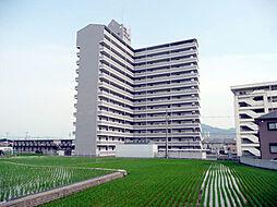 千代グランドマンションA[1階]の外観