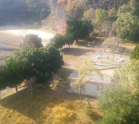 中山中央公園ま...