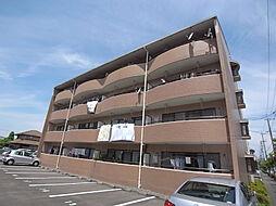 静岡県掛川市南2丁目の賃貸マンションの外観