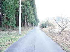 前面道路は開放的な約5m幅の公道です。