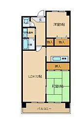 兵庫県尼崎市大島2丁目の賃貸マンションの間取り