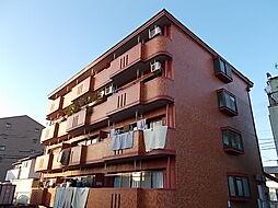サンテラス花ノ木[4階]の外観