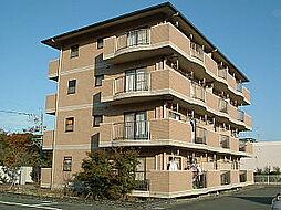 フローラ[3-B号室]の外観