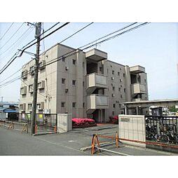 美松ハイツB棟[103号室]の外観