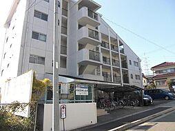 サンハイツ松井[301号室]の外観