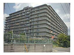 コープ野村京都南6階[6階]の外観