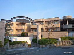 兵庫県宝塚市野上5丁目の賃貸マンションの外観