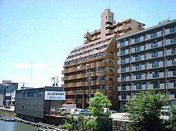 岩井橋ロイヤルハイツ[7階]の外観