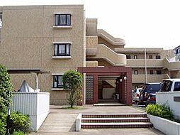 ラ・ヴィーン梅ヶ丘[305号室号室]の外観