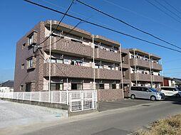 鹿児島県霧島市国分松木町の賃貸マンションの外観