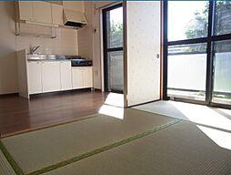 新川崎二千(人気エリア、住環境良好)[307(最上階)号室]の外観