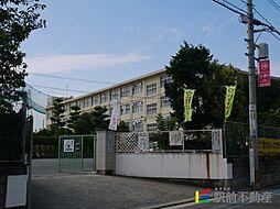 福岡県福岡市城南区鳥飼5丁目の賃貸アパートの外観