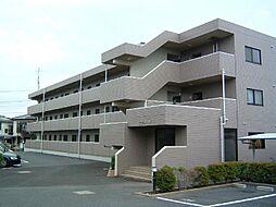 埼玉県さいたま市見沼区中川の賃貸マンションの外観