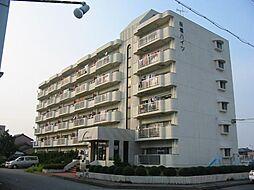 桜橋ハイツ[1階]の外観