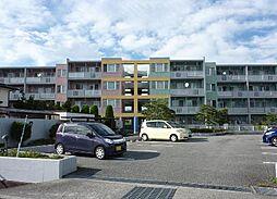 山梨県中央市中楯の賃貸マンションの外観