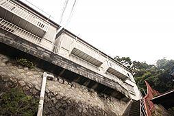 [テラスハウス] 神奈川県横須賀市池田町2丁目 の賃貸【神奈川県 / 横須賀市】の外観
