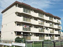 兵庫県姫路市新在家4丁目の賃貸マンションの外観