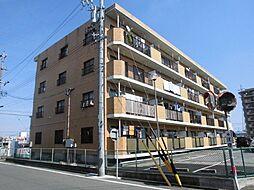 愛知県安城市百石町1丁目の賃貸マンションの外観