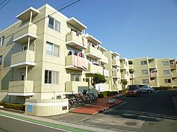 静岡県浜松市中区萩丘1丁目の賃貸マンションの外観