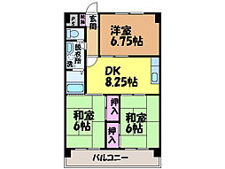 愛媛県松山市桑原5丁目の賃貸マンションの間取り