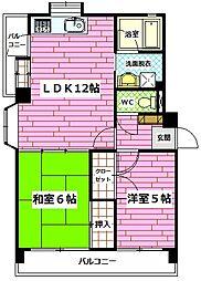 広島県広島市安佐南区中須2丁目の賃貸マンションの間取り