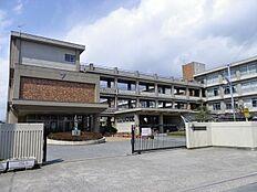 加古川小学校…約650m