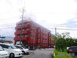 戸渡ハイツ[2階]の外観